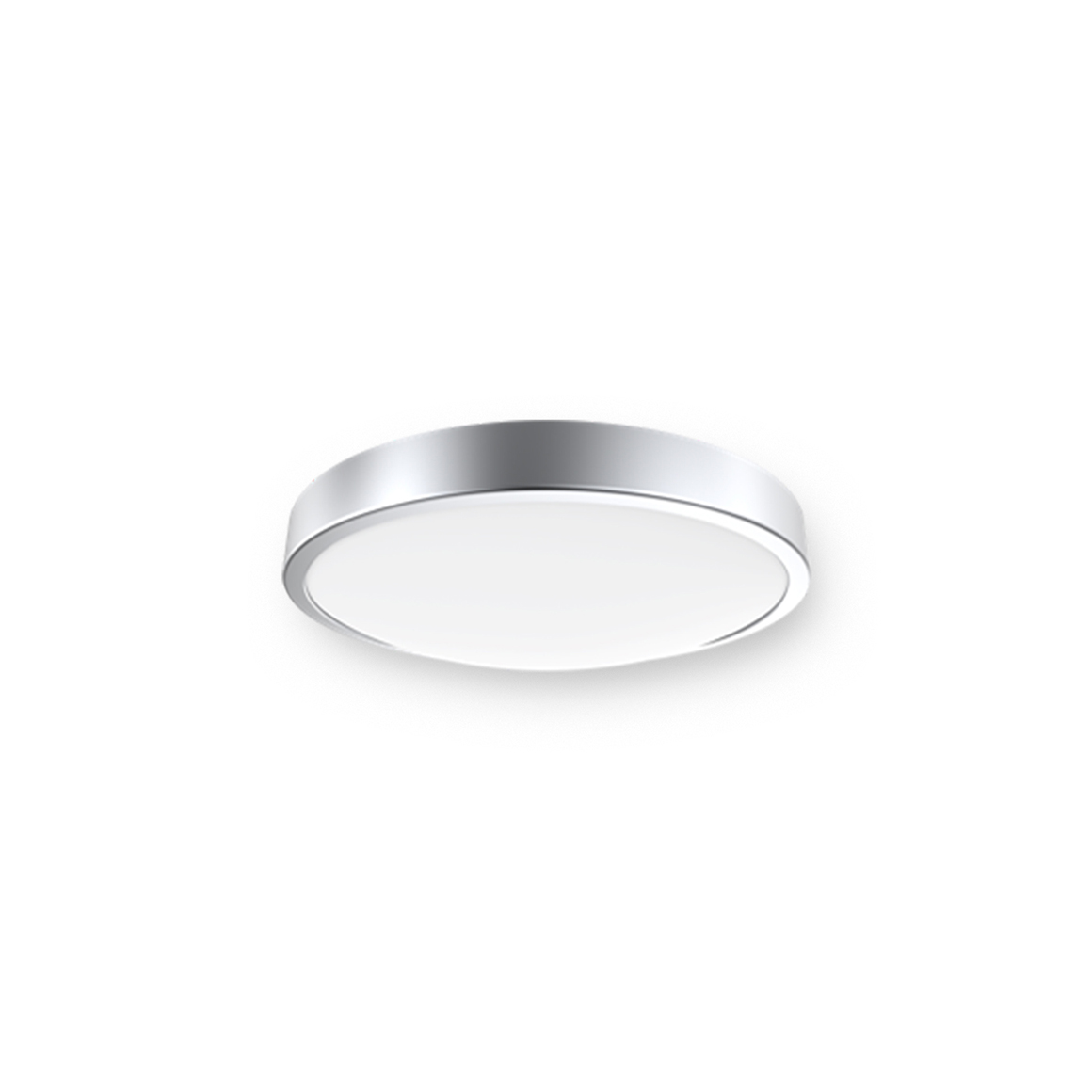 Ordinary Ceiling  Light_C4b